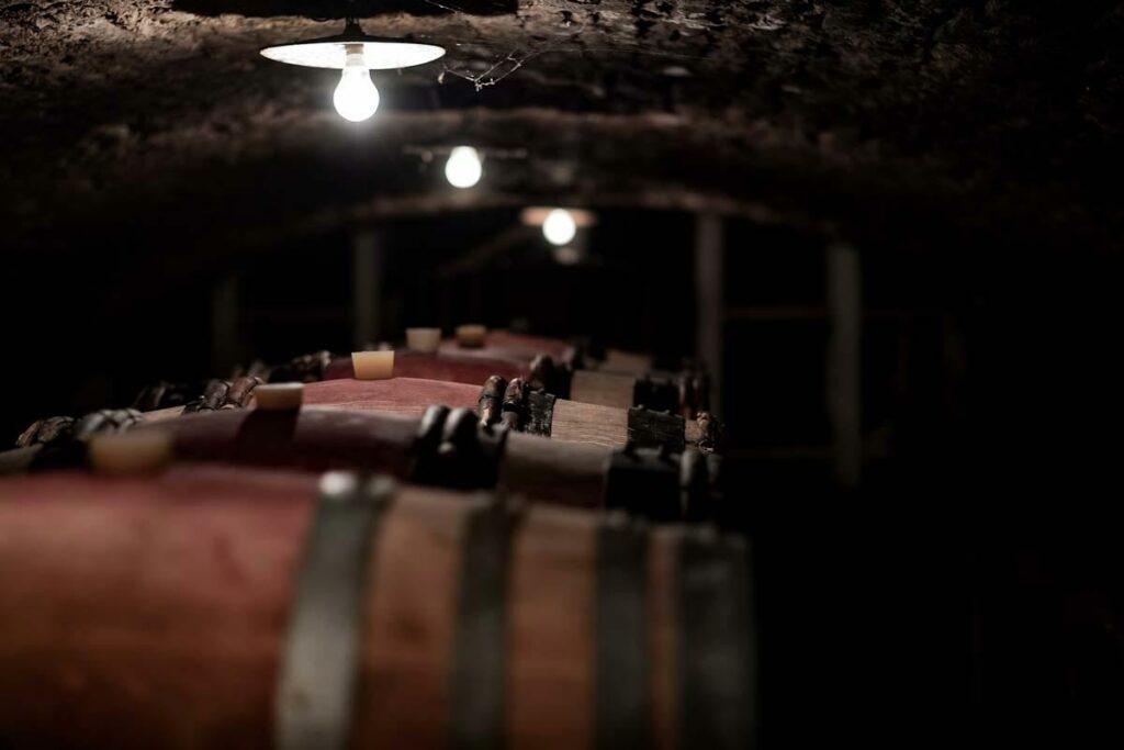 01_histoire-cave-vins-bourgogne-frederic-leprince